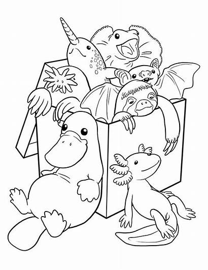 Coloring Pages Weird Fancy Nancy Strange Colouring