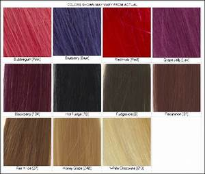 Lena Hoschek How To Use Hair Color Chart Shades Of Red