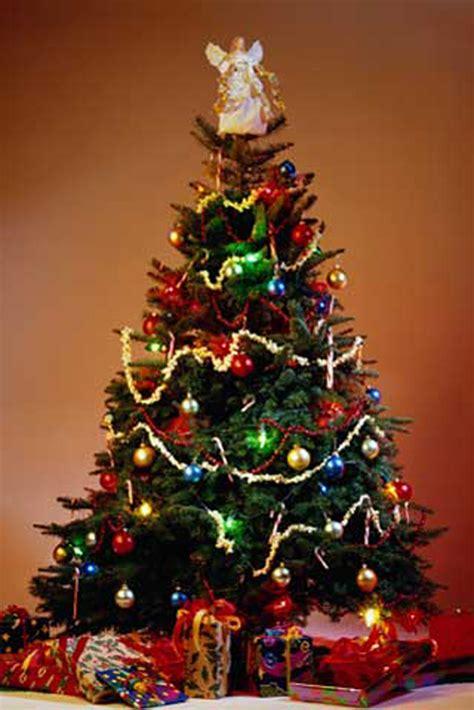 weihnachten weihnachtsbaum poster
