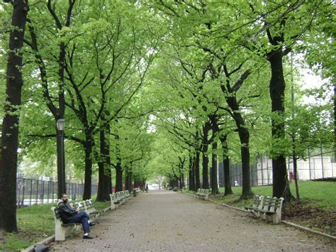 lincoln terrace arthur s somers park nyc parks
