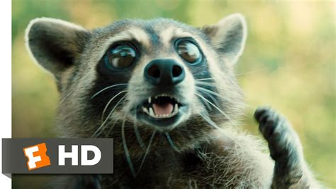 furry vengeance   clip raccoon fight