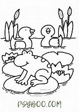 Frog Duck Pond Coloring Sheets sketch template