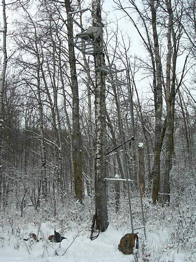 Deer Hunting Tree Stands