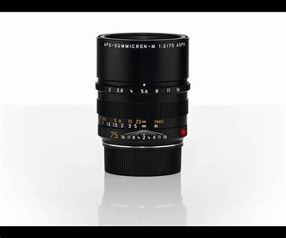 75mm Summicron Apo Leica F2 Rangefinder