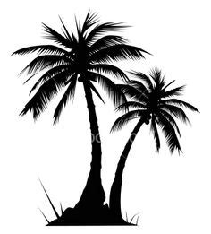 Palm Tree And Sunset Tattoo Designs Palm Tree Tattoos