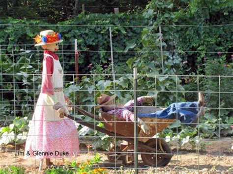 25 best ideas about scarecrows on scarecrow