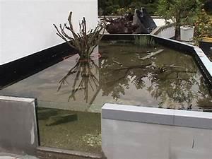 Hochteich Selber Bauen : hochteiche aquarien vorstellung cichlidenwelt forum ~ A.2002-acura-tl-radio.info Haus und Dekorationen