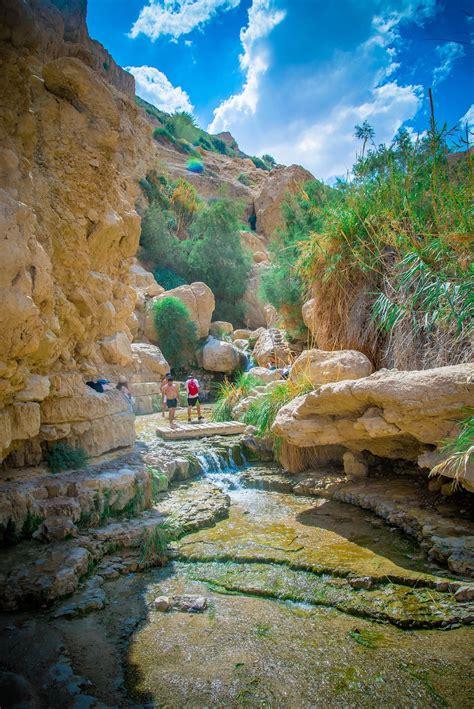 En Gedi Nature Reserve - Israel Nature and Parks Authoritya