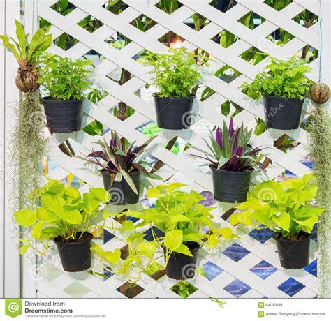 Garten Der Loa by Verzierte Vertikale Idee Garten Der Wand In Der Stadt