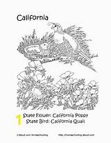 California Missions Coloring Worksheets Printable Worth History Wheeler Anne Reading Books Crosswords Searches Word Divyajanani sketch template