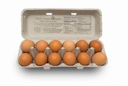 Eggs Raised Pasture Egg Organic Carton Certified