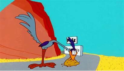 Looney Tunes Coyote Animation Smear Bip Motion