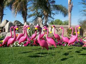 50 premium pink flamingo lawn ornaments gift ideas for gardeners