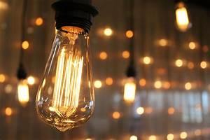 Edison Bulb Wall - Event Rental