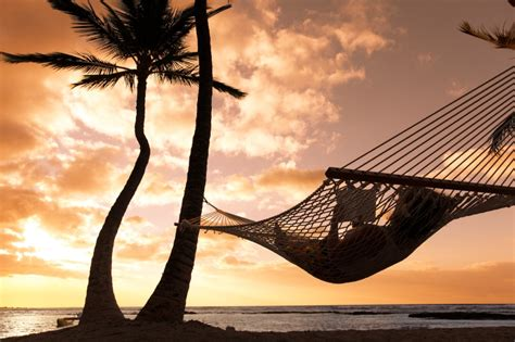 Relaxing On Hammock by Dealing With Risks Associated With Freediving Deeperblue