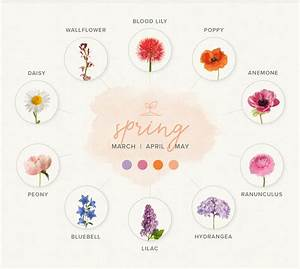 A Guide To Choosing Seasonal Blooms For Your Wedding Flowers