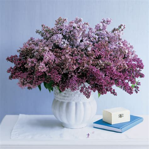 lilac arrangements martha stewart