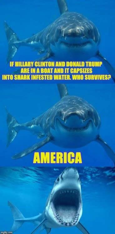 Shark Memes - shark meme on tumblr