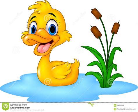 Cartoon Funny Baby Duck Floats On Water Stock Vector
