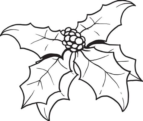 Christmas Holly Coloring Page