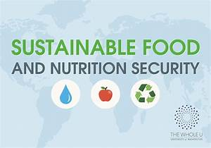 What Is Food And Nutrition Security Food Ideas