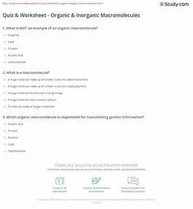 Macromolecule Worksheet 2 Answer Key