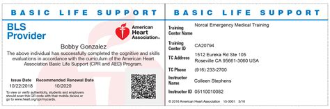 Red cross cpr & first aid. Aha Bls For Healthcare Providers Renewal
