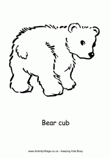 bear colouring page