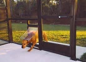 Petsafe Patio Door by Dog Doors And Pet Doors For Porch Installations