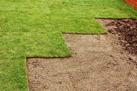 zoysia zorro sod turf grass lawn fresh atlanta varieties cut elberta