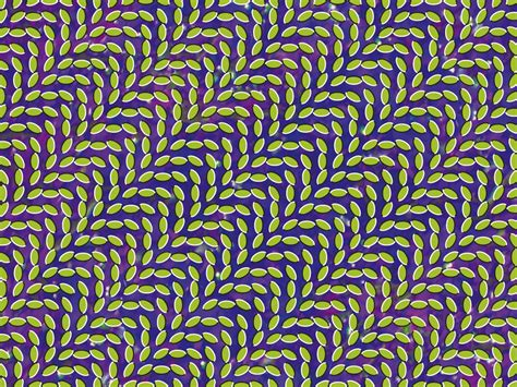 Animal Collective Iphone Wallpaper - animal collective wallpaper 1024x768 wallpoper