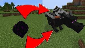 How To Hatch the Ender Dragon Egg in Minecraft Pocket ...