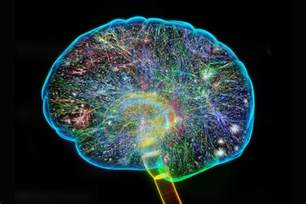 Cool Human Brain Illustration