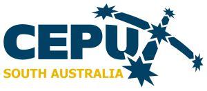 2019 Quadrennial elections - CEPU SA