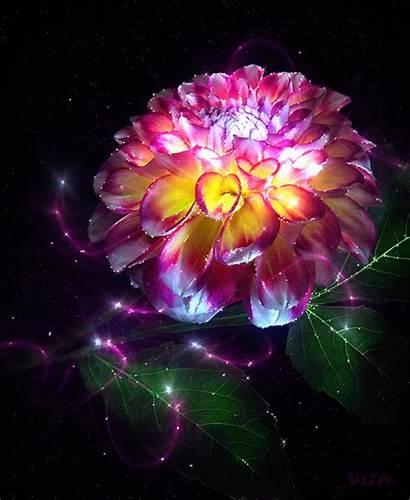Magic Flower Deviantart Diza Flowers Magical Flor