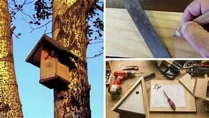 Vogelhaus Selber Bauen Kinder : ein vogelhaus selber bauen so geht es ~ Orissabook.com Haus und Dekorationen