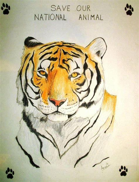 save national animal  india drawing  anant sindal