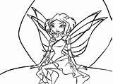Nebula Winx Colorea Colorear Template Coloring Shines Marzo sketch template