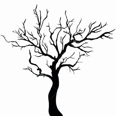 Tree Trunk Drawing Outline Template Printable Clipart