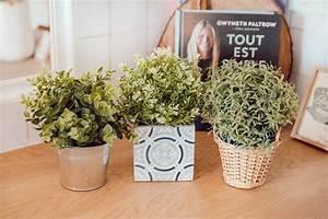 Ikea Plantes Artificielles : les cinq petites choses 259 mode and the city ~ Teatrodelosmanantiales.com Idées de Décoration