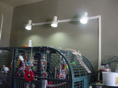 track lighting that plugs into outlet pantry lighting details diy show diy decorating and