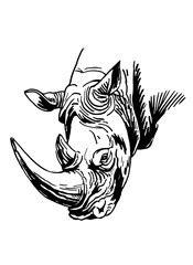 Photos, illustrations et vidéos de cheval tatoo