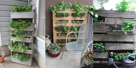 jardin vertical fabrique en palette balcon pinterest