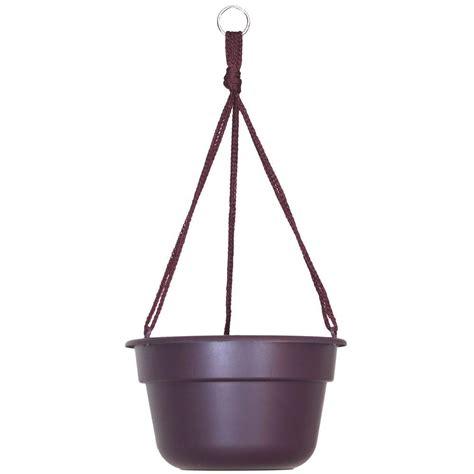 Bloem 12 In Exotica Dura Cotta Plastic Hanging Basket