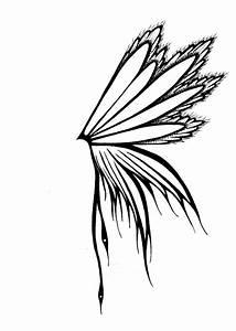 Best Photos of Butterfly Wings Drawing - Butterfly Wings ...