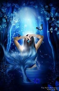 Dark Wood and Mermaid by MelieMelusine on DeviantArt