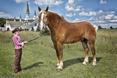 horse biggest human weird records popeye worlds years