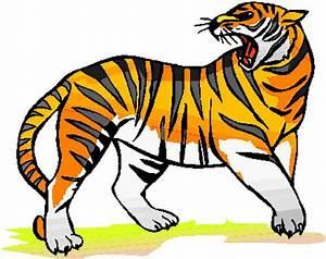 Imagenes tigres animados Imagui