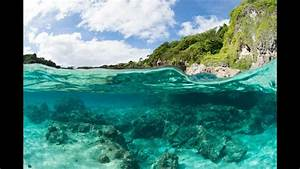 Diving in Niue - YouTube Niue