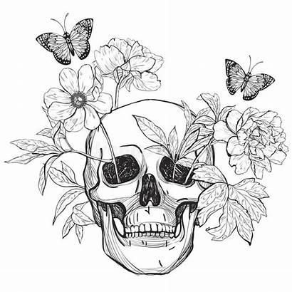 Skull Butterfly Flowers Coloring Tattoo Background Death